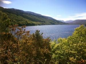 Loch Arkaig, 2015